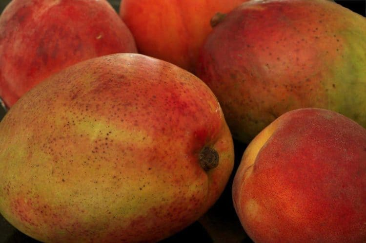 A pile of mangos and peaches