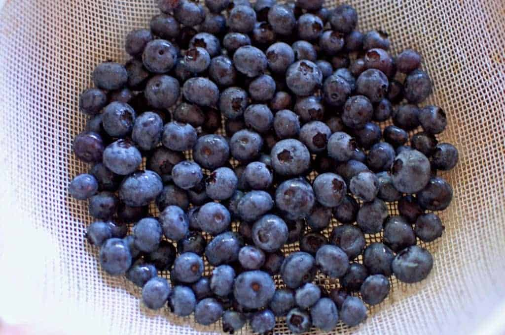 a dish of blueberries