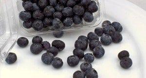 A closeup of blueberries