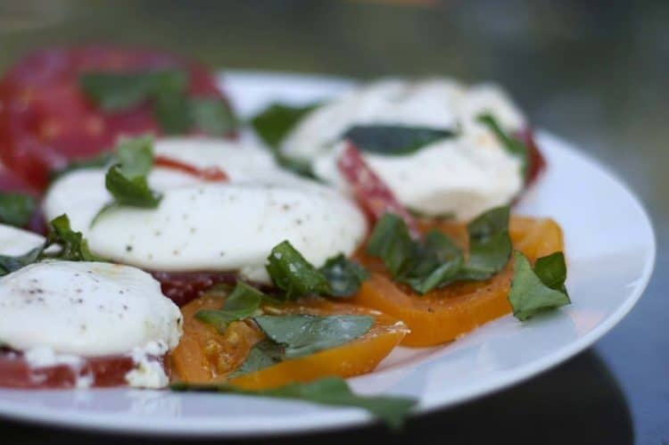 A close up of a plate of food with tomatoes and Burrata