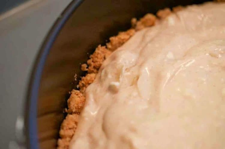 A close up of a fully assembled cheesecake.