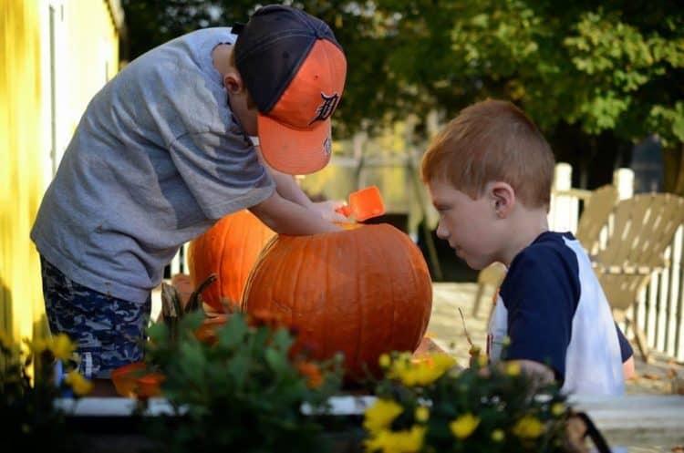 Roasted Pumpkin Seeds from Platter Talk