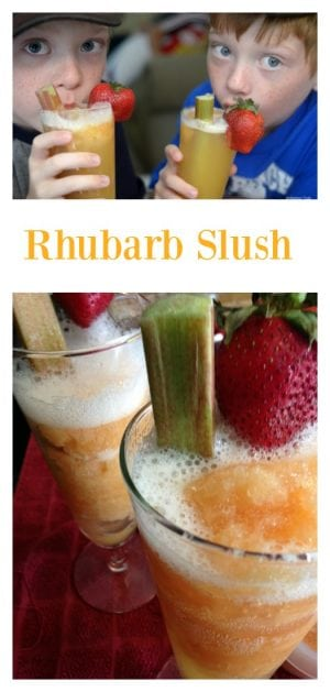 Close up of strawberry and rhubarb stalk garnished glasses of rhubarb slush