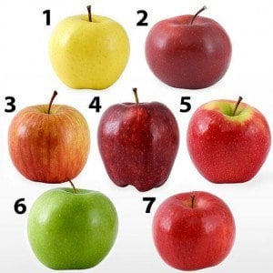 Apple Gude