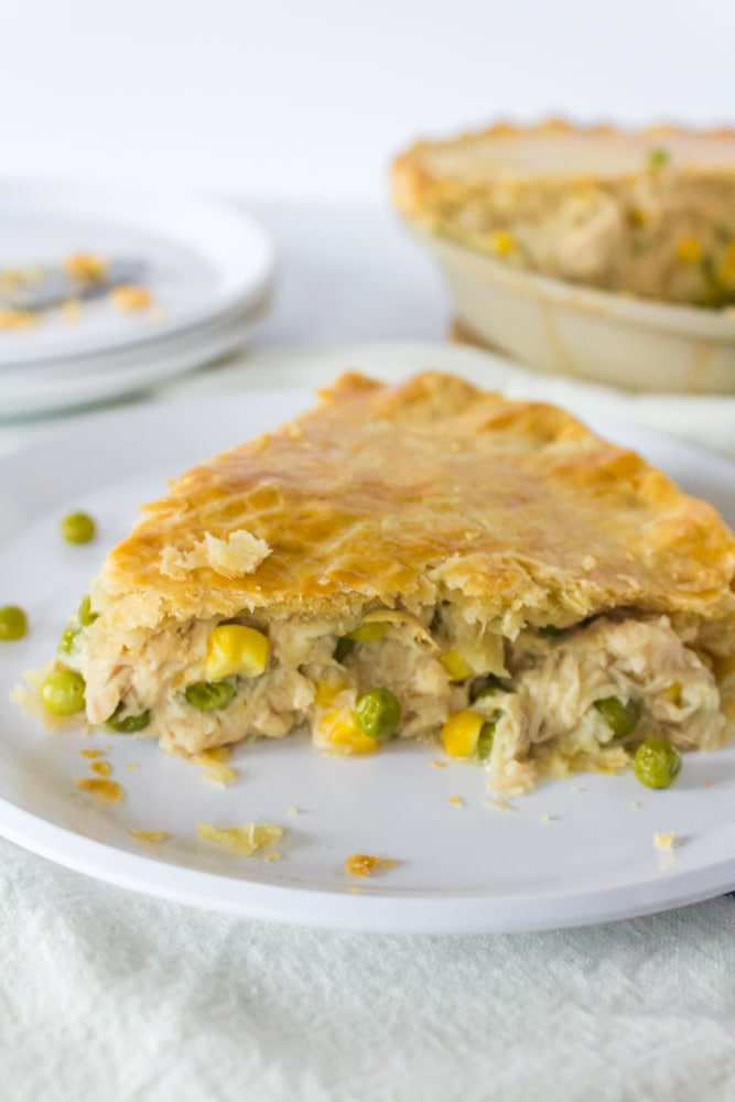 Turkey pot pie on a plate.