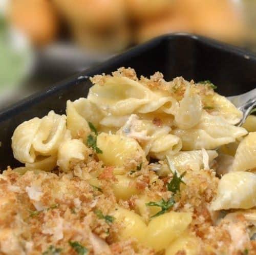 Chicken & Shells Recipe from Platter Talk