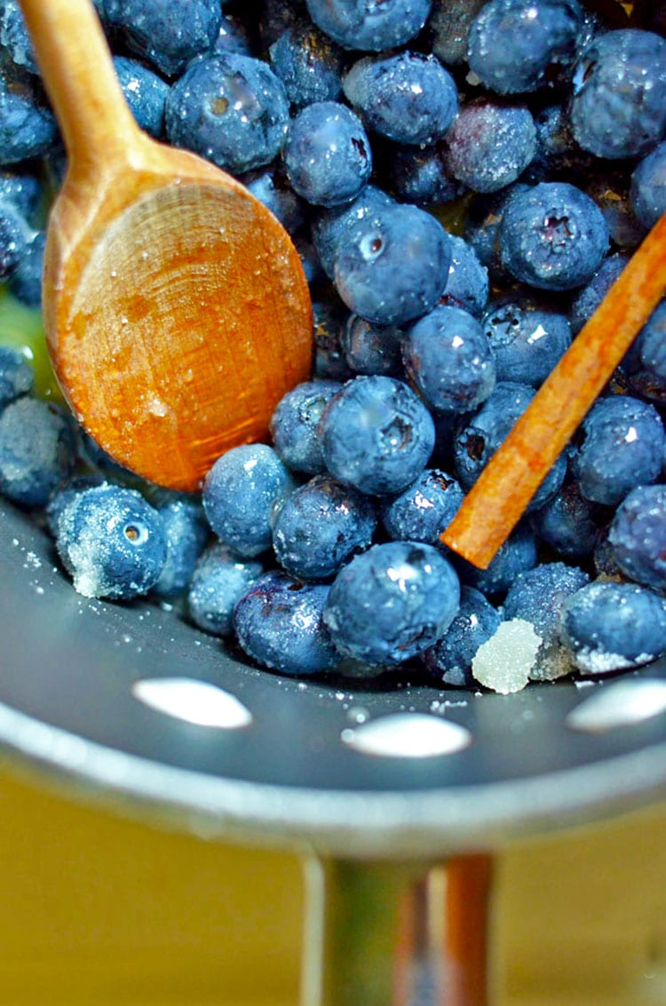 Bowl of fresh blueberries with wooden spoon and cinnamon stick.