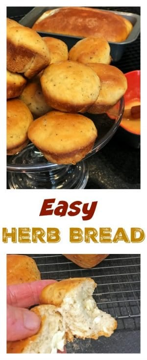 This easy Herb Bread Recipe is simple to make and versatile in both form and flacor. Great as either a roll or slice of bread, you can use the herbs and seasoining that you like, or none at all.