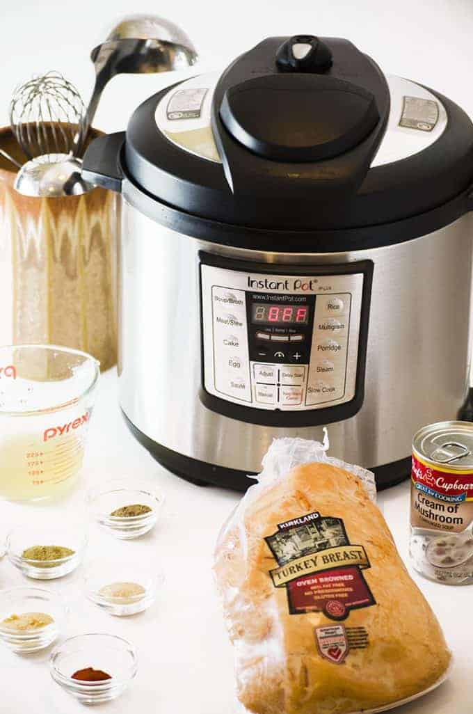 This hot turkey sandwich recipe can be made in either an Instant Pot or a Slow Cooker, jusst a few ingredients.