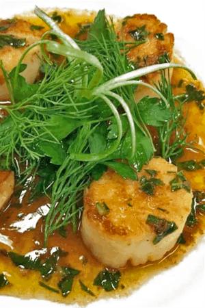 Plate of seared sea scallops with microgreens.