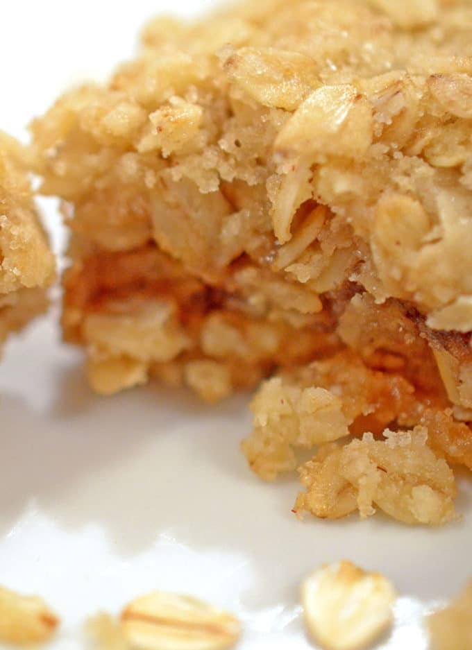 Closeup photo of oatmeal bar with apple butter filling.