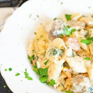 Bowl of creamy pasta
