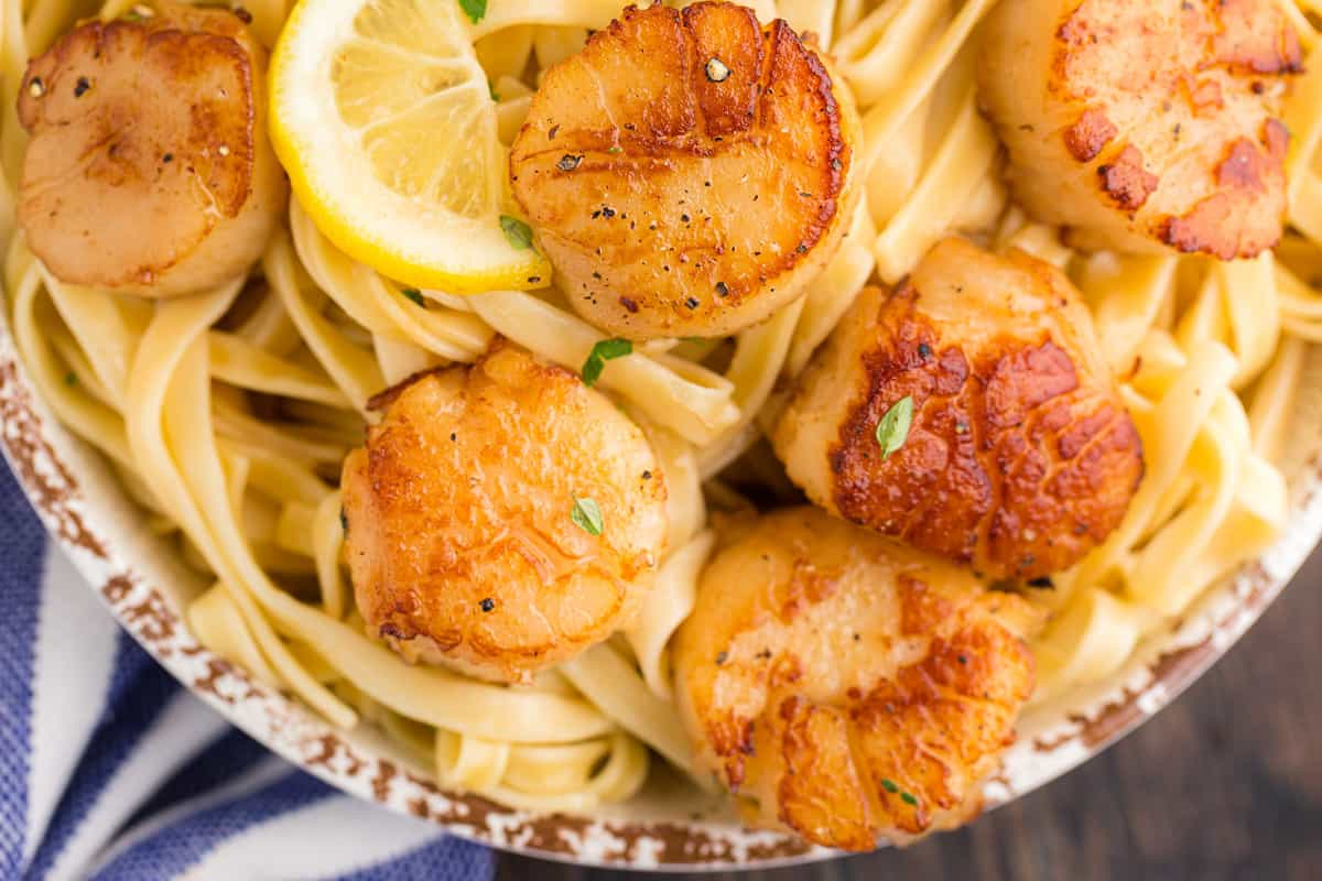 A bunch of scallops on a bed of pasta.