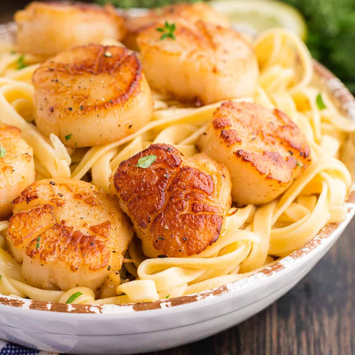 A bowl of seared sea scallops on a bed of pasta.